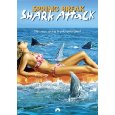 Name:  sharkspringbreak.jpg