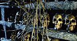 BBC Dr Who Wedding Of River Song Skull Labyrinth Set  skulls by www.skullsdirect.co.uk