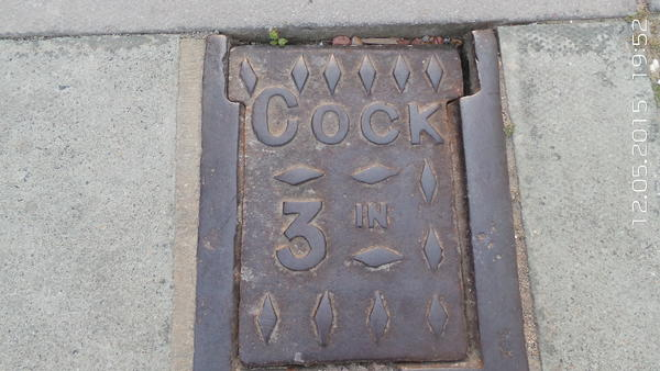 My favourite place in Portsmouth, I often ask people if they would like to see my 3 inch cock. I often get some strange looks, funny that, eh?